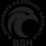 Bjerringbro-Silkeborg